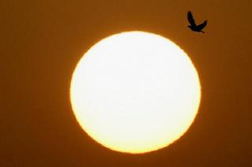 The sun rises in Egypt's capital, Cairo, Egypt, on 1 June.