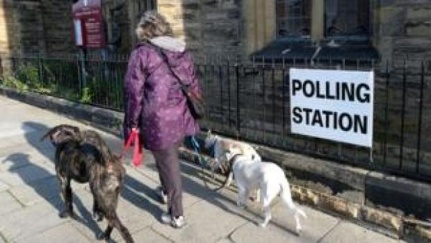 woman with two dogs at polling station