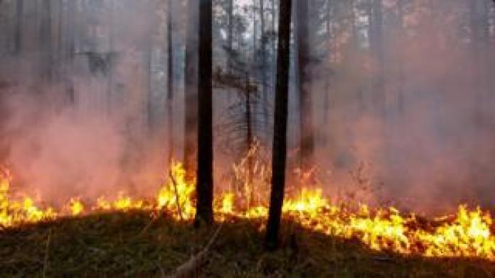Waldbrände Alaska Karte.Arktische Waldbrände Was Hat Dazu Geführt Dass Sich Riesige