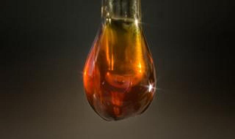 Oldest oil