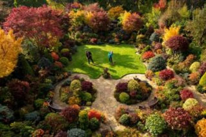A couple in a colourful garden