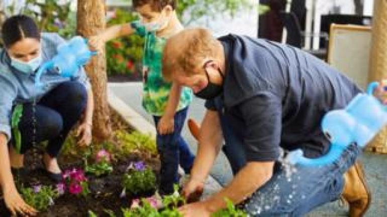 Prince Harry and Meghan plants flower in LA