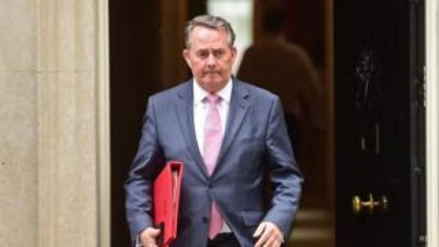 Liam Fox leaves 10 Downing Street after a cabinet meeting