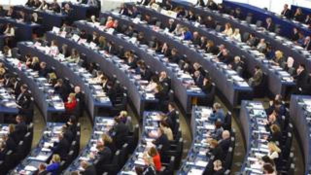 MEPs in the European Parliament