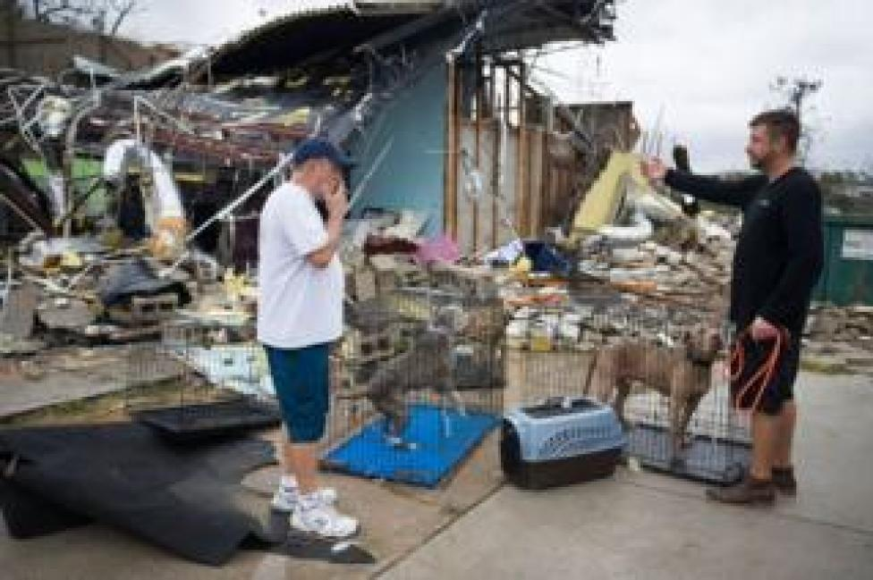 NEWS A collapsed kennel and two dogs in cages outside among the wreckage.
