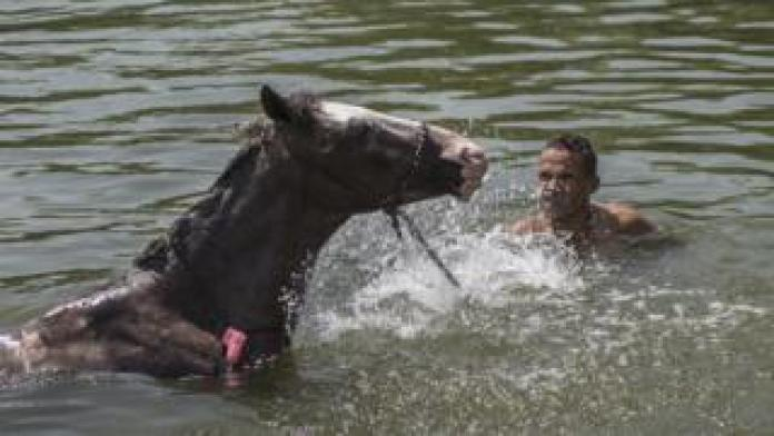 Man and a horse in water - Friday 24 May 2019
