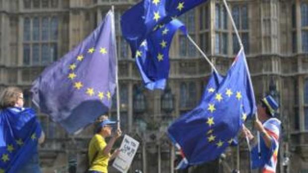 EU protesters