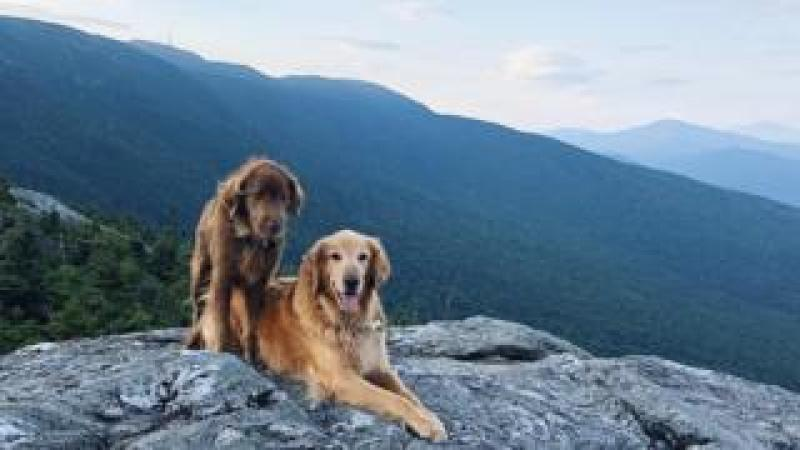 A sunrise hike of Mount Mansfield, Vermont was on Finn's bucket list