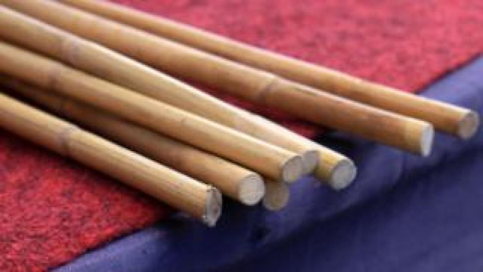 Whipping canes (file photo)