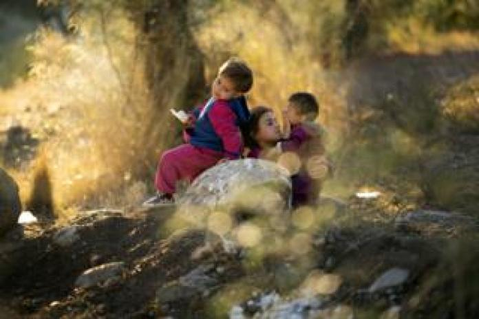 Young children play in the olive grove in the unofficial camp outside the Moria Refugee Camp