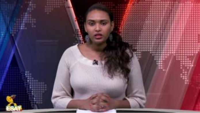 Ethiopia Rebel Group Suspend Fight