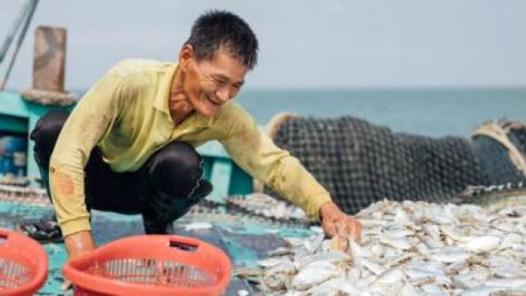 MyFishman is a fresh seafood subscription and delivery service in Malaysia.
