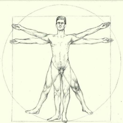 El hombre de Vitruvio contemporáneo