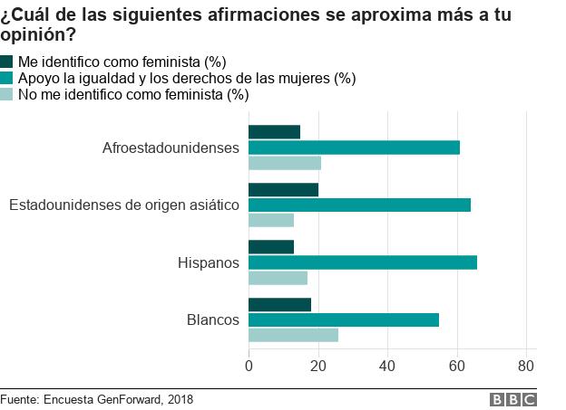 Gráfico de barras con las respuestas por grupo étnico a las preguntas de si eres feminista o no y si apoyas a los derechos de las mujeres