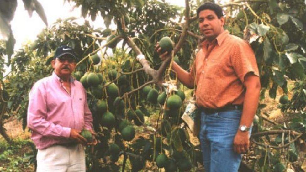 Carlos Antonio Castillo Pimentel con su hijo, Karel Castillo, al lado de un árbol de aguacates de la variedad Carla
