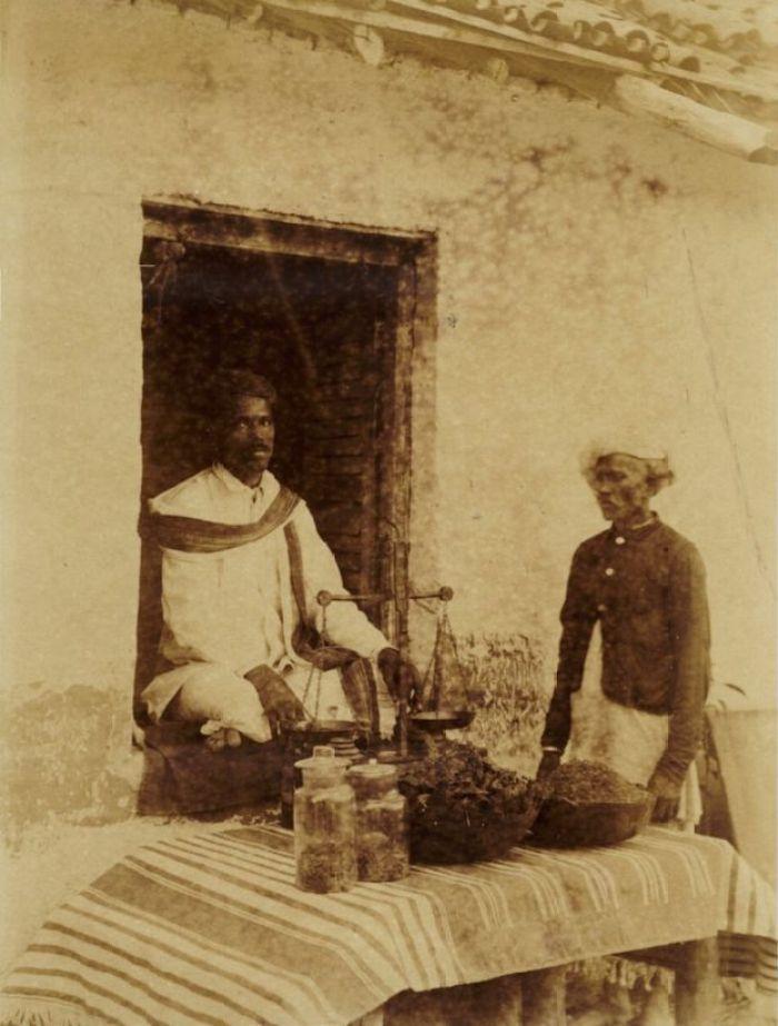 Vendedor de cannabis na Índia, em meados do século 19 (imagem de domínio público)