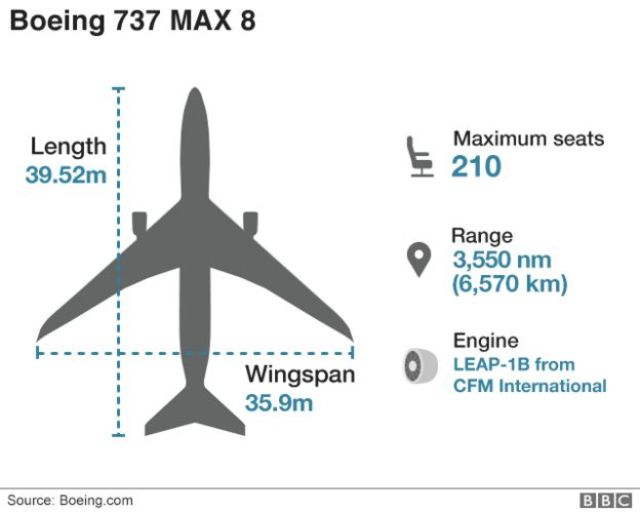 Graphic showing the Boeing 737 Max 8 plane