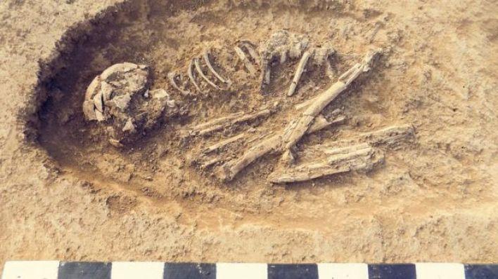 حفريات أثرية لإنسان (هيكل عظمي في مقبرة بشرية)