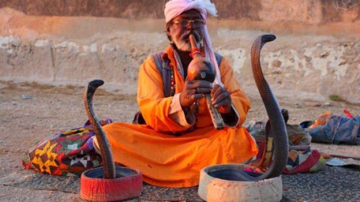 सर्पलाई नचाउँदै पाकिस्तानमा एक मानिस