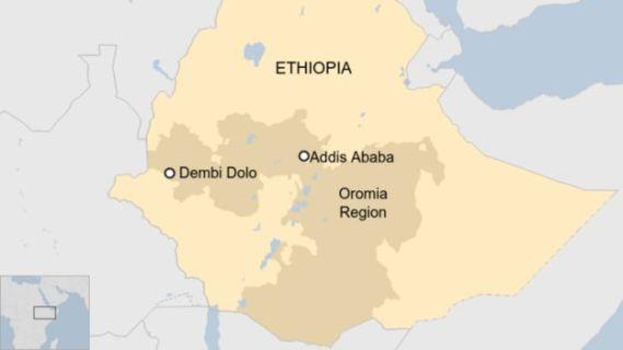 Dembi Dolo University in Ethiopia's Oromia region