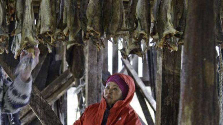 Trabajo en una planta de procesamiento de pescado