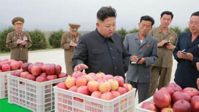 Visita de Jong-un a uma fazenda de frutas