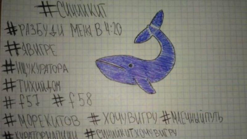 Jogo Baleia Azul
