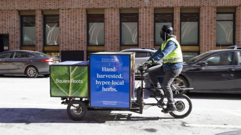 Square Roots herb delivery