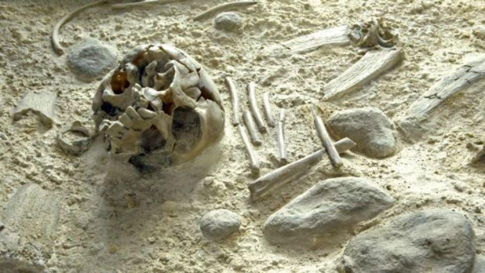 Neandertal kalıntıları