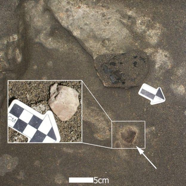 Pequeño fogón con una fecha cercana a los 16.000 años, y asociado con huesos quemados de caballo americano prehistórico y piedra exótica.