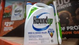 Roundup products are seen for sale at a hardware store in San Rafael, California, on July, 9, 2018