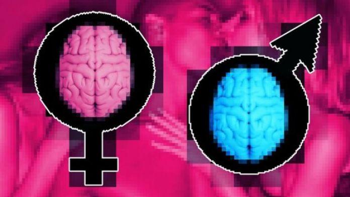 composition d'image - symboles masculins et féminins, cerveaux pixélisés rose et bleu, arrière-plan violet et rose vif