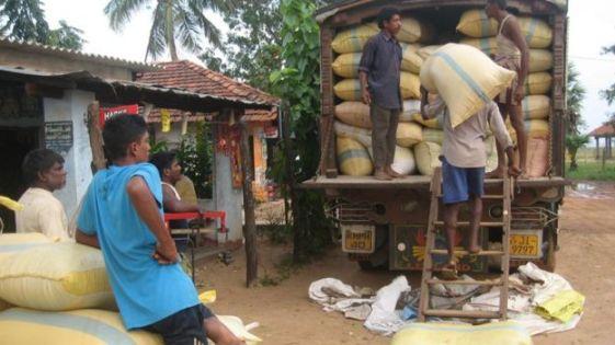 இலங்கை: ஆசிய நாடுகளிலிருந்து அரிசி இறக்குமதி செய்ய முடிவு