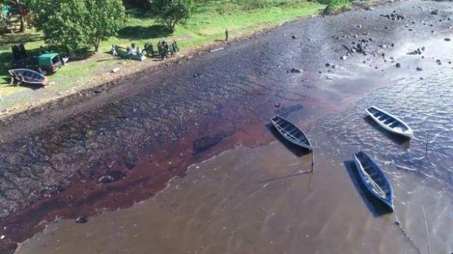 Une vue du pétrole arrivant à terre sur l'île
