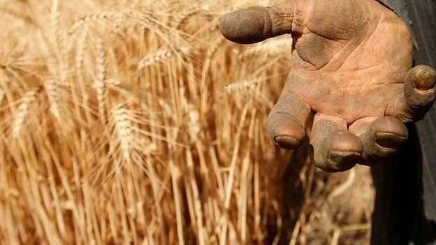 Close up dusty hand (Image: BBC)