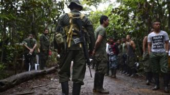Image result for Colombian rebel leader killed in military operation