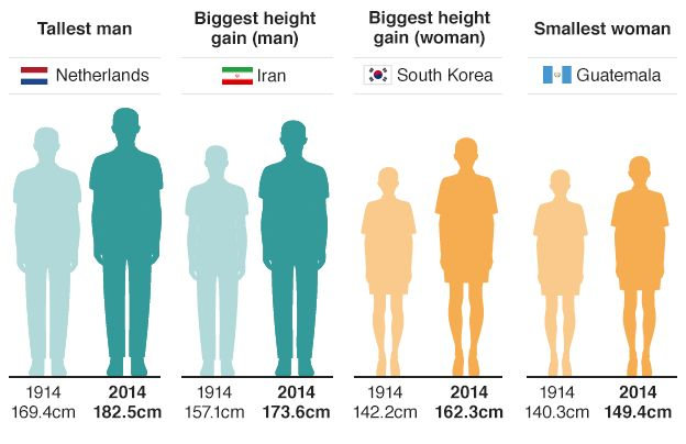 Image result for Dutch men are the tallest in the world