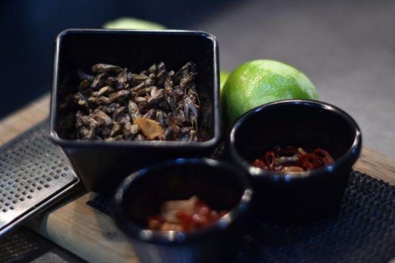 Plato hecho con cucarachas