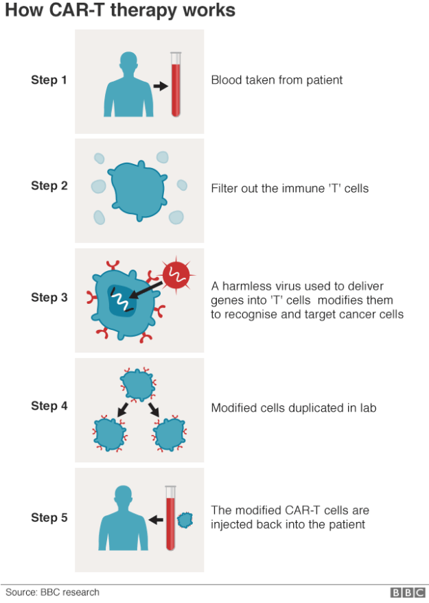 Infographic explaining how CAR-t works