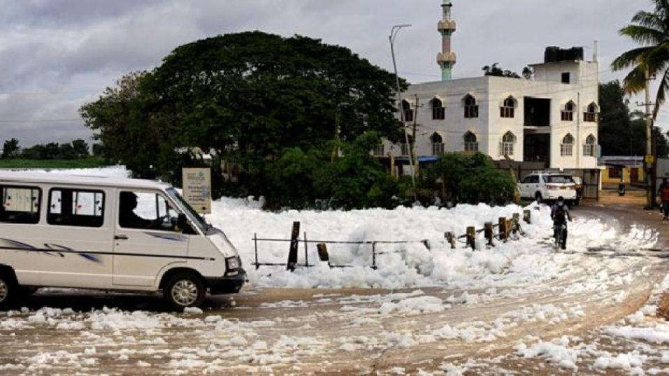 Bangalore foam