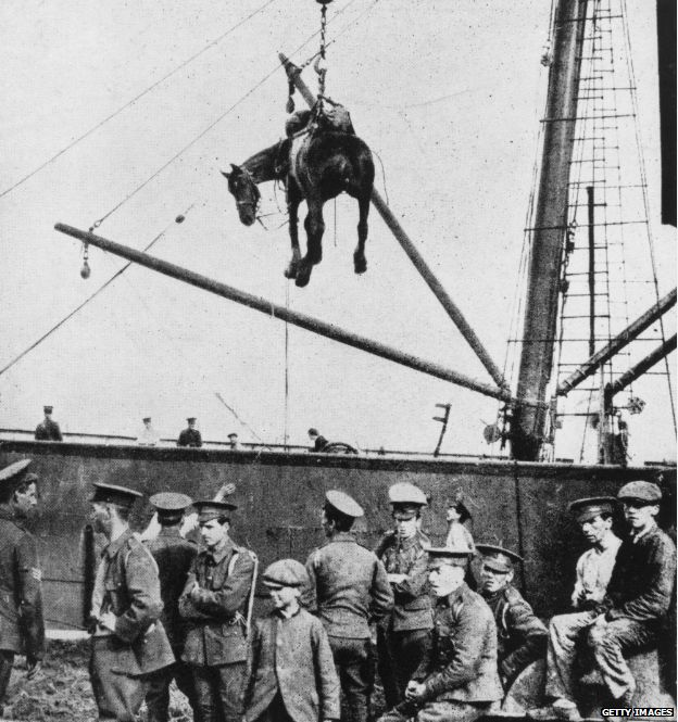 A horse is landed from a British military transport ship at Boulogne, France, during World War I