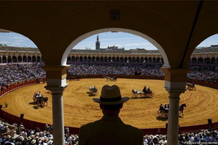 A man watches a carriage exhibition in the Maestranza bullring of the Andalusian capital of Seville, southern Spain