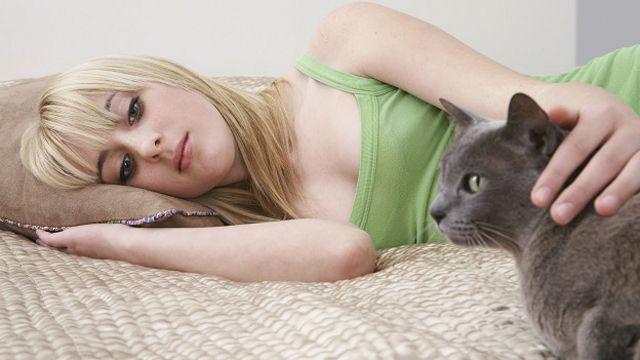 Kontak tubuh dengan manusia membuat kucing merasa nyaman.