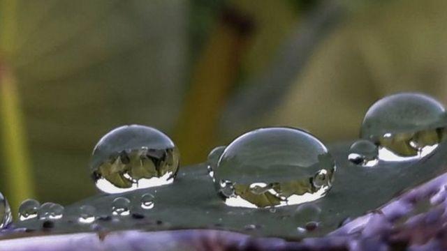 Imagem mostra gotas de água