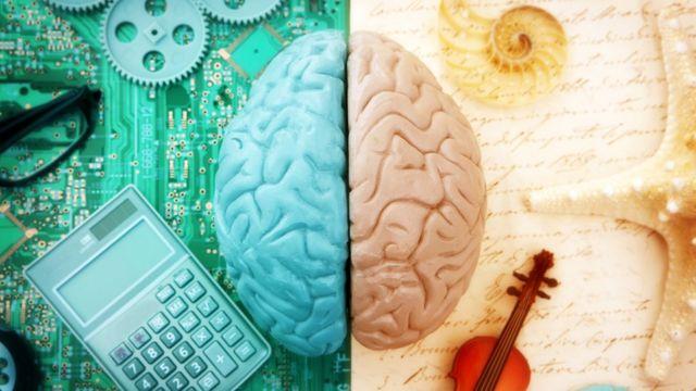 Ilustração dos dois hemisférios do cérebro