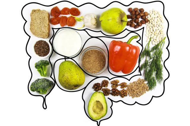 Ilustração de intestino com alimentos