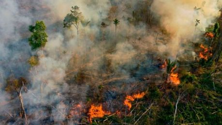 Fumaça e chamas sobem de um incêndio ilegal em uma reserva da floresta amazônica, ao sul de Novo Progresso, no estado do Pará, Brasil