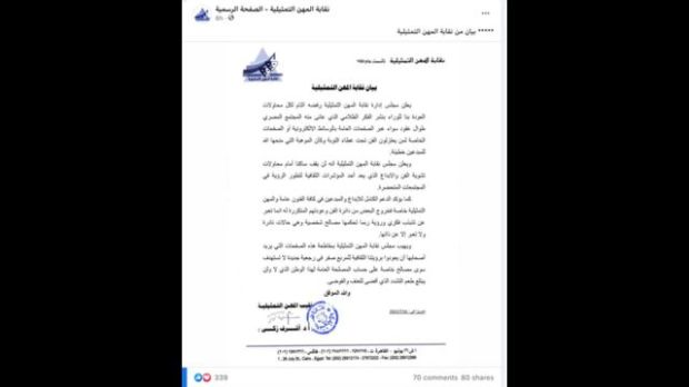 مجلس إدارة نقابة المهن التمثيلية