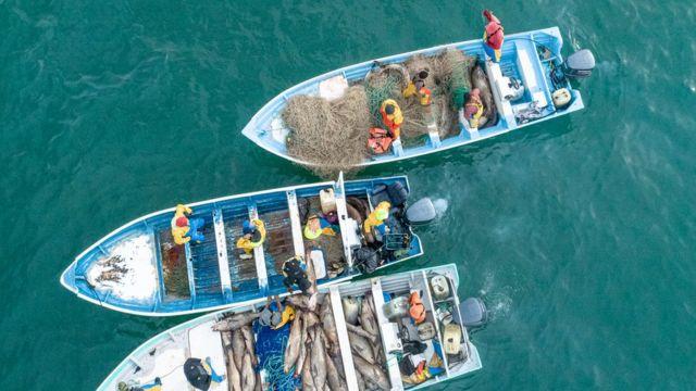 лодки с Тотоабой