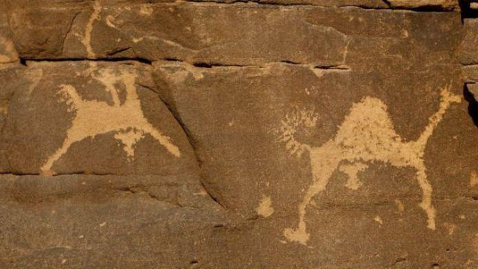 rock carvings